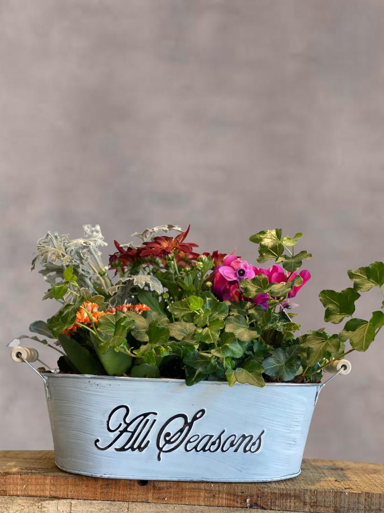 Seasonal Plant Box